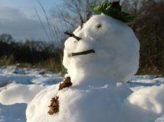 snowman130114.jpg