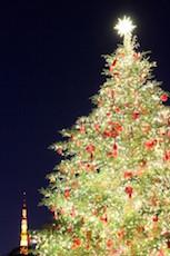 tree_161221.jpg