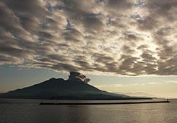 噴煙を上げる雄大な桜島は島内全体が天然の博物館だった