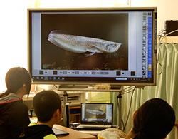 デジタル教科書の「スライドショー機能」で画像を見ながら朗読を聞くと内容に集中しやすい