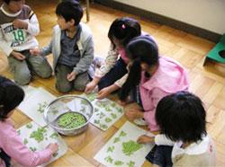 算数で学んだ方法で豆を数える