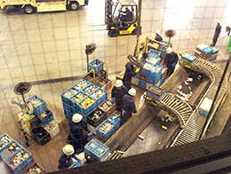 缶を選別するスタッフは空き缶に入ったたばこの吸い殻などを手作業で確認する