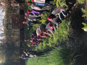 市内の屋上農園で行われた農育体験