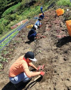 感染症対策を意識しながら、農林業などを主体的に学べる